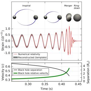 Modello, onda gravitazionale e parametri dei due buchi neri
